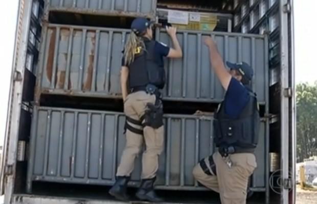 PRF fiscaliza o transporte de alimentos em caminhões na BR-050, em Goiás (Foto: Reprodução/ TV Anhanguera)