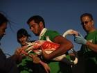 Cerca de 500 flamingos são medidos e identificados em reserva espanhola