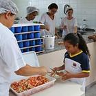 Agricultores fornecerão alimentos para as escolas