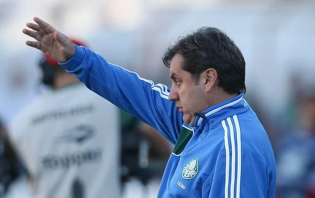 Gilson Kleina Palmeiras (Foto: Cesar Greco / Ag. Estado)