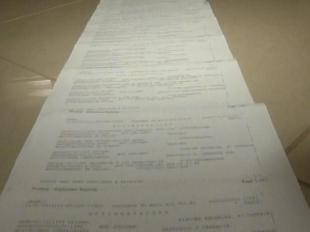 Ficha criminal da mulher tem 30 páginas  (Foto: reprodução/TV Tem)