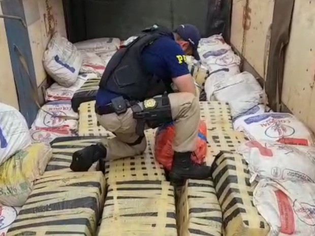 PRF apreende cerca de 6 toneladas de maconha em carreta na BR-060 em Rio Verde, Goiás (Foto: Divulgação/ PRF)