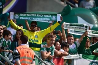 Palmeiras x Atlético-MG torcida (Foto: Marcos Ribolli)