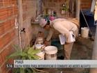 Prefeitos do NE reclamam da falta de verba para combater o Aedes aegypti