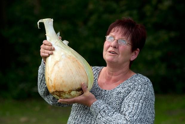 Com cebola de 6,165 quilos, britânica Barbara Cook conquistou título  (Foto: Oli Scarff/AFP)