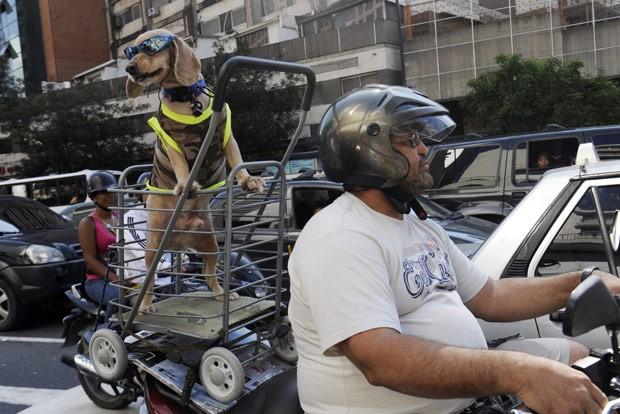 Cão anda na 'garupa' da moto do dono neste domingo (16) em Caracas (Foto: Leo Ramirez/AFP)
