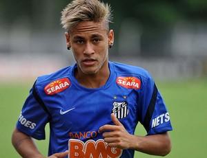 Neymar (Foto: Ivan Storti / Divulgação Santos FC)