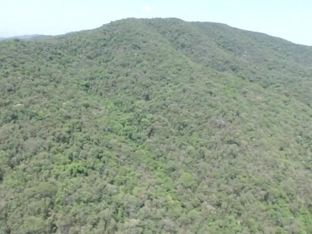 Levantamento visa preservar fauna e flora da Serra do Japi (Foto: Reprodução/TV TEM)