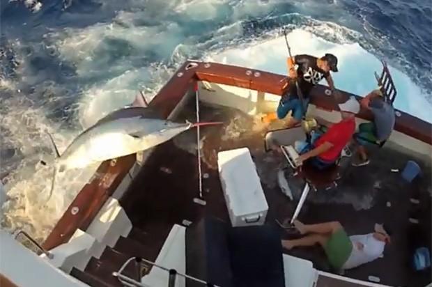 Peixe de 3 Kg pulou para dentro do barco e assustou pescadores (Foto: Reprodução)