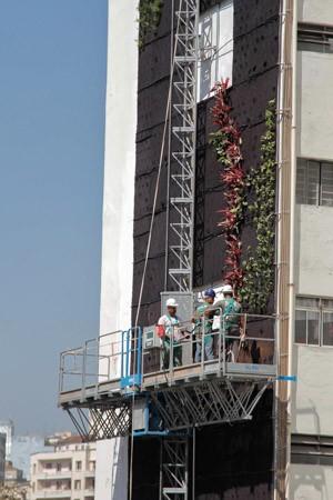 Jardim vertical suspenso começa a ser montado no Edifício Huds, localizado entre a Avenida São João e Rua Helvetia, em frente ao Minhocão, na manhã desta terça-feira (1), em São Paulo (SP) (Foto: MARIVALDO OLIVEIRA/FUTURA PRESS/FUTURA PRESS/ESTADÃO CONTEÚDO)