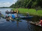 Pescadores lançam campanha contra comercialização do pirarucu, no AM