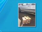 Policiais estranham comportamento de cão e encontram droga em carro
