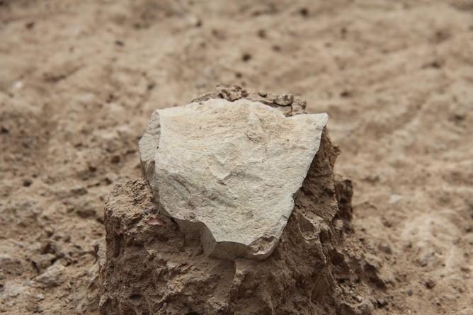 A ferramenta de pedra mais antiga - feita por um ancestral humano ou chimpanzé? (Foto:  MPK-WTAP)