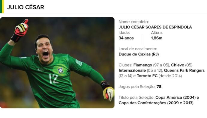 PERFIL jogadores brasil - Julio Cesar (Foto: Editoria de arte)