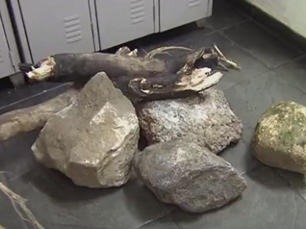 Pedras e galhos foram atiradas por criminosos na Imigrantes (Foto: Reprodução/TV Tribuna)