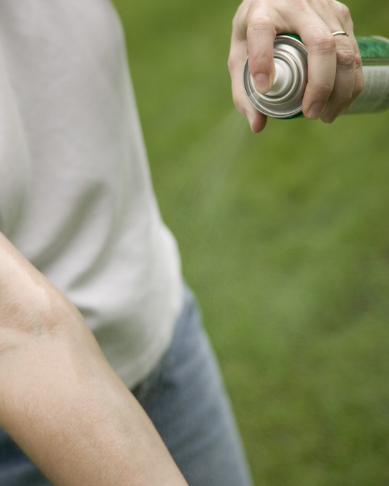 O uso do repelente ajuda a proteger contra o mosquito. Estudos sugerem que eles são seguros durante a gestação (Foto: Thinkstock)