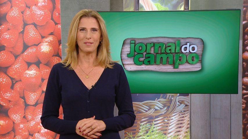 Jornal do Campo (Foto: Divulgação)