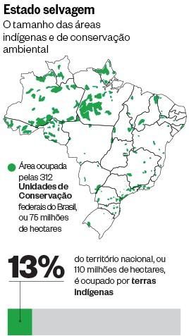 Estado selvagem  (Foto: ÉPOCA)