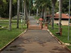 Visitas ao Zoo de Goiânia caem após morte de macaco com febre amarela