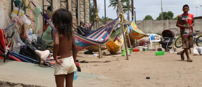 Resultado de imagem para grupo de indios vivem debaixo de arvore na venezuela