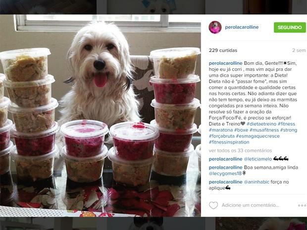 Post da cadelinha Pérola Carolline no Instagram (Foto: Reprodução/Instagram)