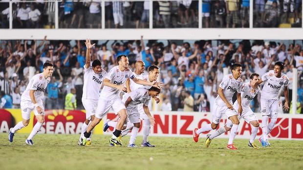 Santos x Palmeiras (Foto: Marcos Ribolli / globoesporte.com)