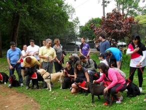 Família acolhedora e treinamento específico para se tornar cão-guia. Foto Divulgação.