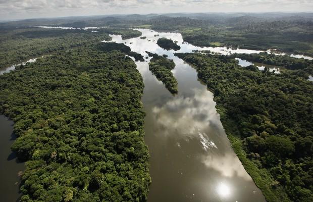 Vista área da floresta amazônica em Altamira, Pará (Foto: Mario Tama/Getty Image)