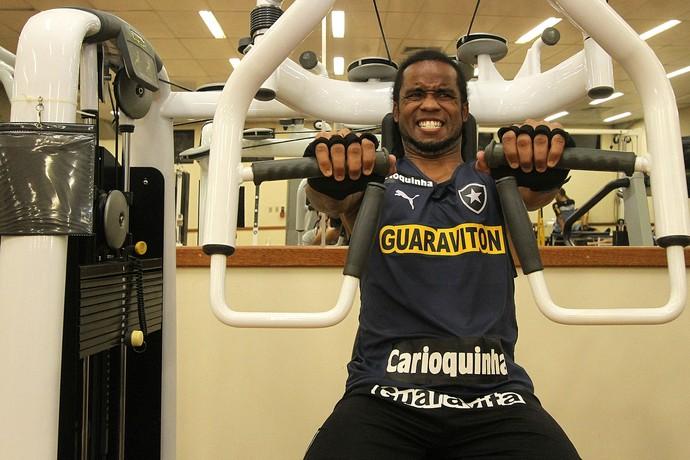 Carlos Alberto, Botafogo, Engenhão (Foto: Vitor Silva/SS Press)