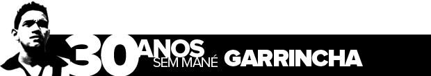 Header_30anos_sem-Garrincha (Foto: infoesporte)