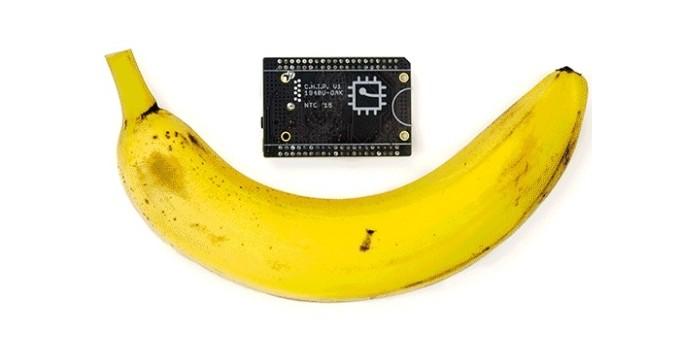 CHIP é menor que uma banana (Foto: Divulgação/Next Thing)