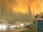 Mudanças climáticas influenciaram as queimadas nas florestas do Canadá?