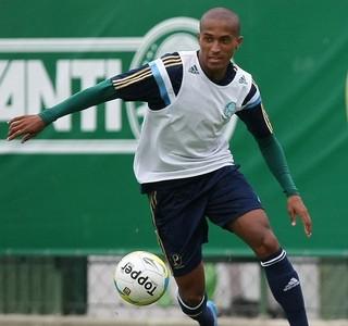 Renato Palmeiras (Foto: Cesar Greco/Ag Palmeiras/Divulgação)
