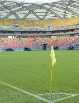 Arena da Amazônia (Foto: Marcos Dantas)
