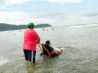 'Praia Acessível' funciona até o fim de fevereiro em Praia Grande, SP