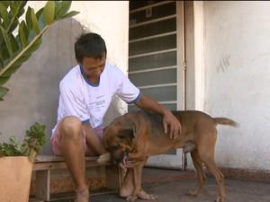 Resultado de imagem para Cão salva rapaz em incêndio que destruiu casa em Matão: 'Um herói'