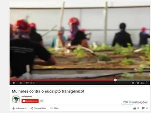 Vídeo mostra manifestantes quebrando mudas em estufa (Foto: Reprodução/ Youtube)