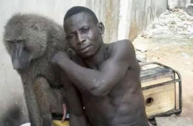 Mohammed Nafiu e um dos babuínos foram presos pela polícia (Foto: Reprodução/Twitter/Paul Ikpe)
