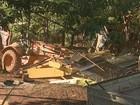 Famílias são retiradas de parque ecológico em Ribeirão Preto, SP