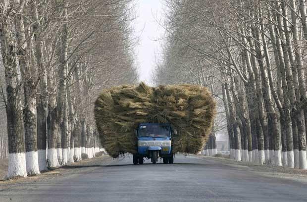 Em 11 de janeiro de 2008, um caminhão foi fotografado sobrecarregado em uma estrada nos arredores de Shenyang, na China. A carga praticamente bloqueava toda a pista (Foto: Reuters)