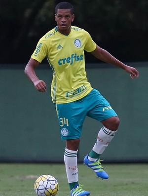 Augusto Palmeiras (Foto: Cesar Greco / Ag. Palmeiras / Divulgação)
