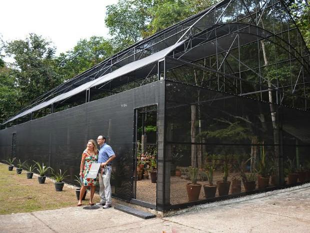 Espaço é aberto para visitação de terça a domingo, das 8h às 17h (Foto: Divulgação/Museu da Amazônia)