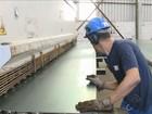 Saldo de empregos de Chapecó tem crescimento maior que média de SC