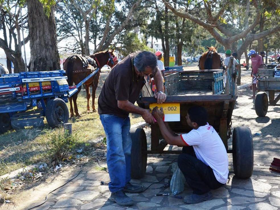 Carroças de Vitória da Conquista deverão ser emplacadas e animais terão de usar 'fraldas'. (Foto:  Secom/PMVC.)