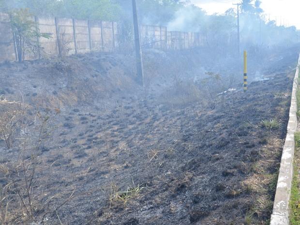 De acordo com o Corpo de Bombeiros, o incêndio não oferece risco, mesmo sendo de média proporção. (Foto: Walter Paparazzo/G1)