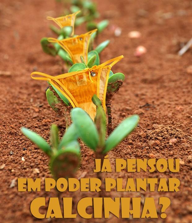 Plantar calcinha, Bruno?!?! (Foto: Malhação / TV Globo)