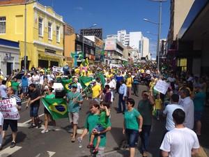 Protesto de 15 de março em Ponta Grossa (PR) (Foto: Andre Salustiano/G1)