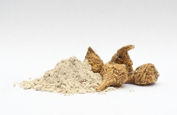 """Maca Peruana: da Cordilheira dos Andes para o mundo, farinha é um """"superalimento"""" (Foto: iStock Photo)"""