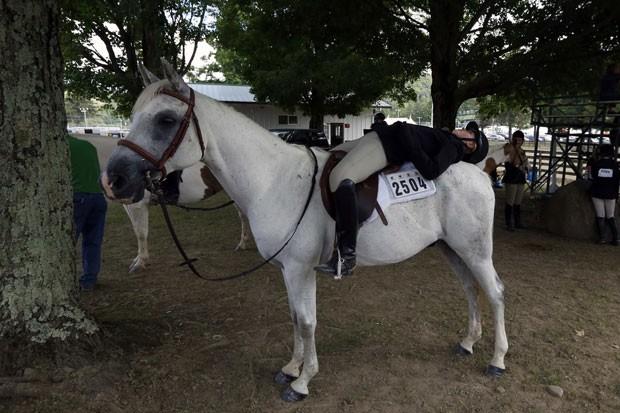 Cavaleiro foi fotografado tirando soneca montado em seu cavalo  (Foto: Brendan McDermid/Reuters)
