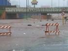 Avenida em Bauru vira 'rio' em apenas sete minutos durante chuva; vídeo